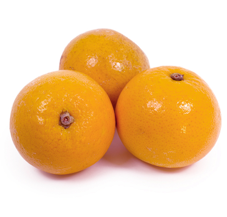 Organic Oranges-Week's Supply